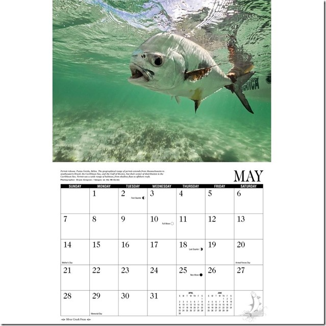 Saltwater-Fly-Fishing-Wall-Calendar-_57 (1)