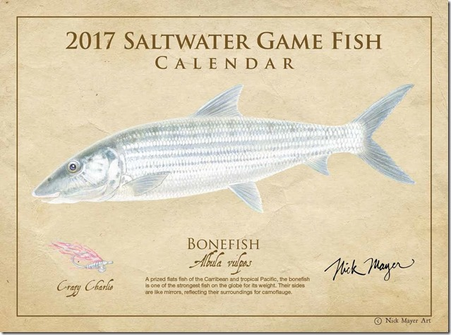 Saltwater_Game_Fish_Front (1)