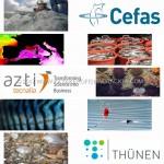 Consorzio-europeo-studio-impatto-pesca-sportiva.jpg