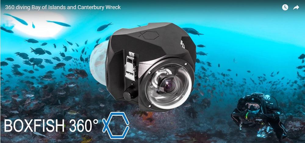 Boxfish 360