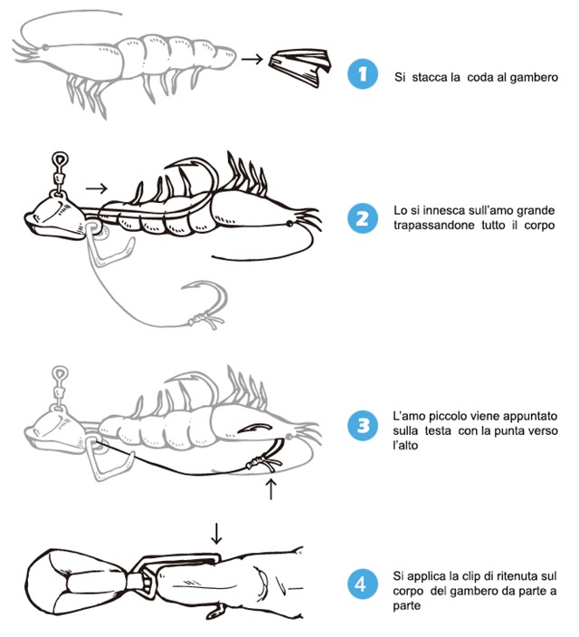 Innesco-e-uso-della-clip