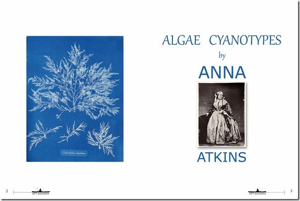 0008--KFTANNA-ATKINS-1-cover