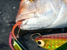 TACKLE-HOUSE-slow-jig-cover.jpg