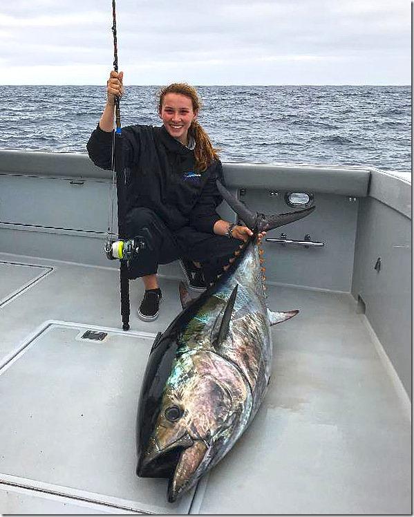 Pacific Blue Tuna 1