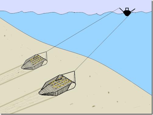 RS-Pulse-Trawl
