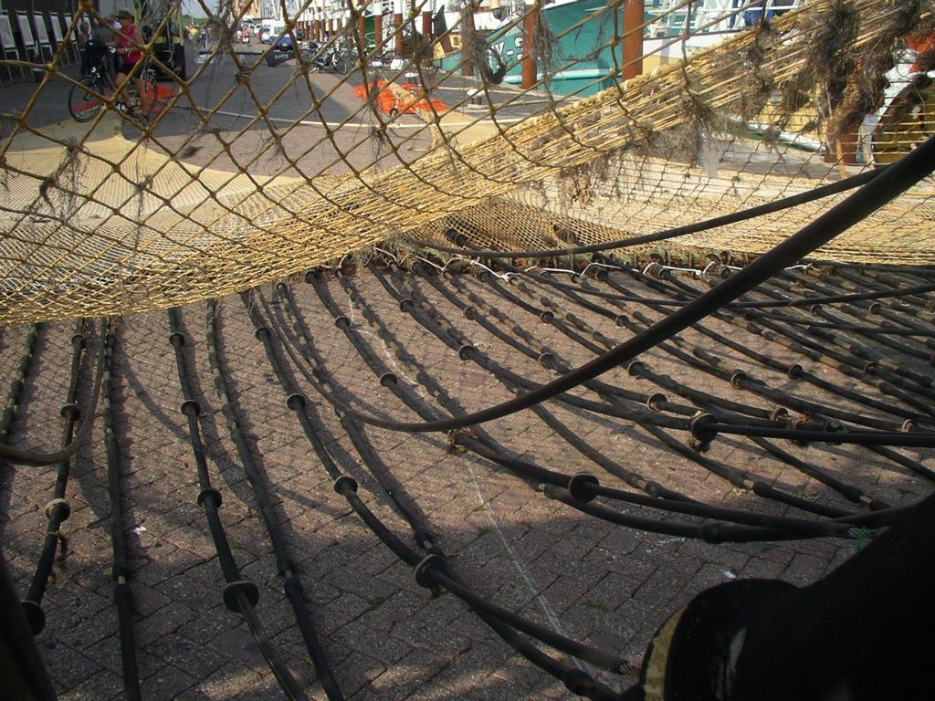 Reti da pesca elettrificate