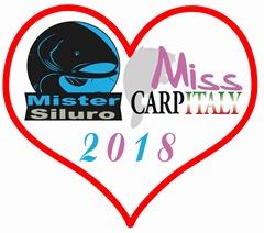 logo_miss_mister