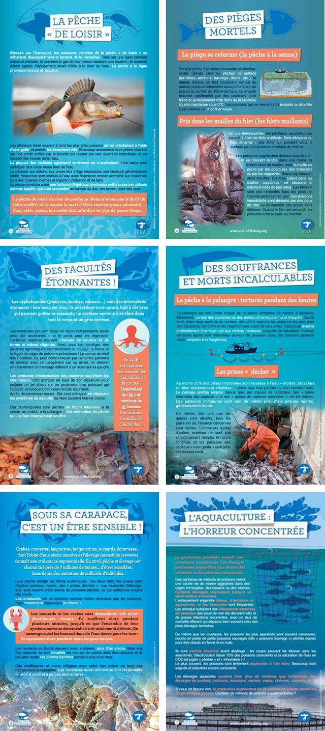 Campagna-contro-la-pesca