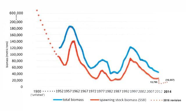 Grafico biomassa di tonno e percentuale di riproduttori negli anni