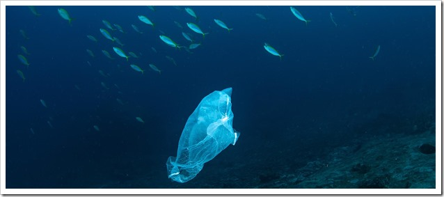 plastic_bag_1