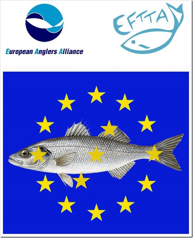 SPIGOLA E COMMISSIONE EUROPEA