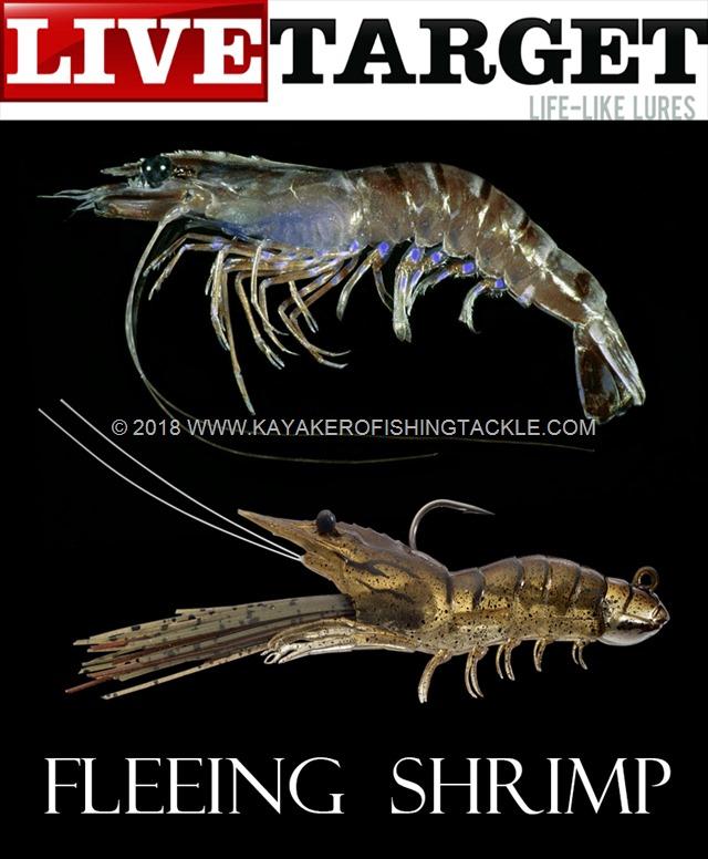 LIVETARGET-Fleeing-Shrimp
