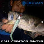 Coreman-cover-VJ-22-Vibration-Jig-head.jpg
