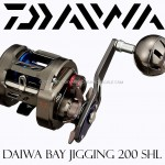 DAIWA-SALTIGA-BAY-JIGGING-200-SHL-cover.jpg