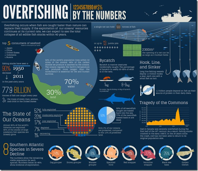 overfishing-infographic-by-aquaholics