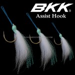 BKK-ASSIST-HOOK-Cover.jpg