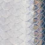 2020-BKK-OBM-Catalog-cover.jpg