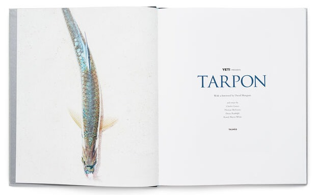 191253-Tarpon-Book-Website-Assets-Studio-Spread-Intro-Title-1680x1024