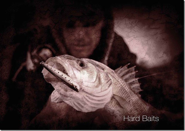 Molix-2020-Catalog-2-hard-baits