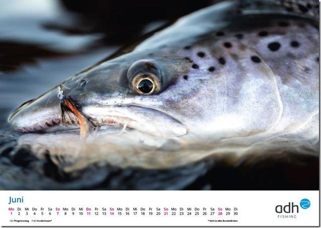 kalender-adh-fishing-2020-06_1280x1280