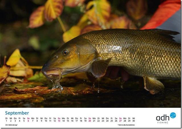 kalender-adh-fishing-2020-09_1280x1280