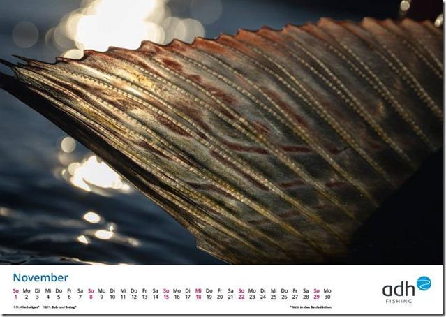 kalender-adh-fishing-2020-11_1280x1280