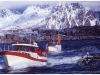 20-lofoten-lofoten-wccf-return-of-fishing-cod