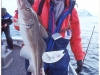 6-lofoten-lofoten-wccf-a-good-catch-of-withe-cod