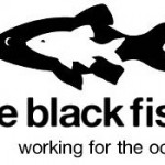 The-Black-Fish-logo-web.jpg