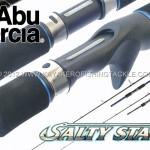 Abu-Salty-Stage-cover.jpg
