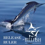 Billfish-Foundation-release-ruler.jpg