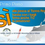 Petizione-Tonno-Rosso-Fipas.jpg
