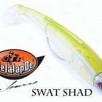 Delalande-SWAT-SHAD.jpg