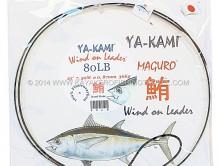 YA-KAMI-WINDS-ON-cover-.jpg