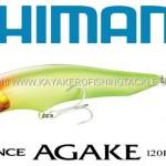 SHIMANO-Agake-ARC.jpg