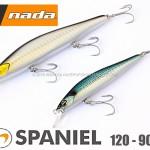 Nada-Spaniel-120-90-cover.jpg