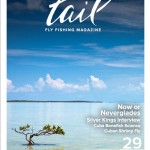 Tail-Volume-29-Cover.jpg