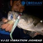 Coreman-cover-VJ-22-Vibration-Jig-head.jpg