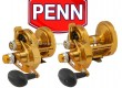 PENN-Torque-Lever-Drag-2-Speed-cover.jpg