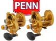 PENN-Torque-Lever-Drag-2-Speed-cover.jpg