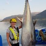 Tonno-delle-gabbie-da-salmone-in-Norvegia.jpg