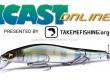 ICAST-2020-Online-Artificiali.jpg