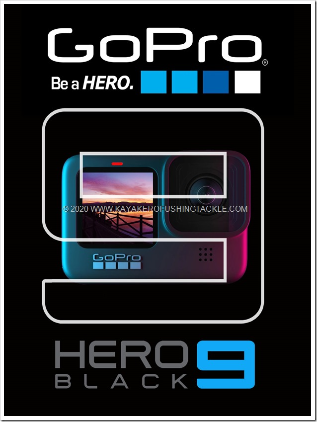 GOPRO 9 cover